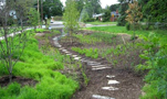 Stormwater Biotretention